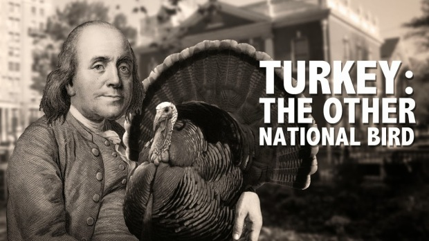 ben franklin and turkey